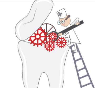 ¿Necesitas un especialista en endodoncia? - Clínica dentalmedics – Dr. Ferrer