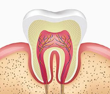 especialista en endodoncia